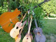 KUD-Izvor-instrumenti